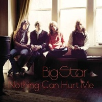 BIG STAR - Nothing Can Hurt Me (2 Lp)