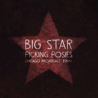 BIG STAR - Picking Posies -deluxe-
