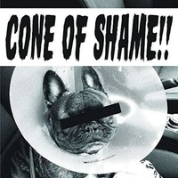 FAITH NO MORE - Cone Of Shame (Colv) (Gol)