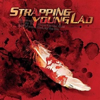 STRAPPING YOUNG LAD - Syl (Vinyl)
