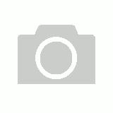 vestal cult
